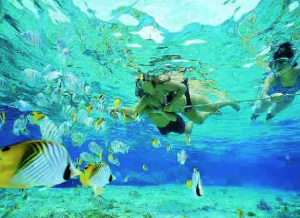Trunk Bay snorkelers